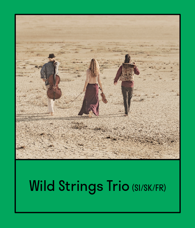 WILD STRINGS TRIO (Slovenia/Slovakia/France)